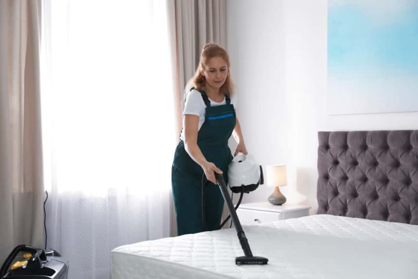 10 Best Steamers for Bed Bugs – Don't Sleep with the Enemy!