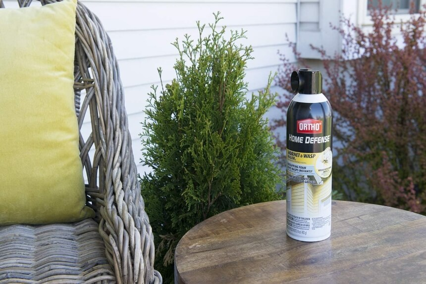 5 Best Wasp Foggers - Aid in Your Battle with Insects