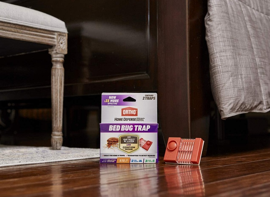 5 Best Bed Bug Traps - No Surprises While You Sleep