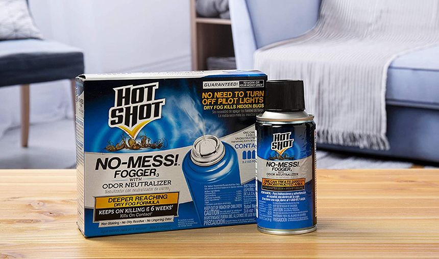 5 Best Roach Bombs - No More Nasty Guests at Your House